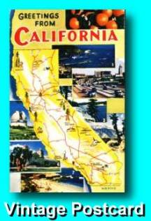 California Vintage Postcard